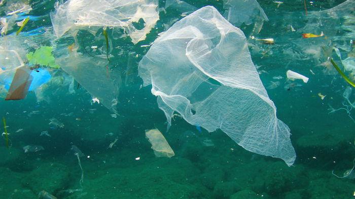 Ученые создали новое поколение биопластика из целлюлозы и воды