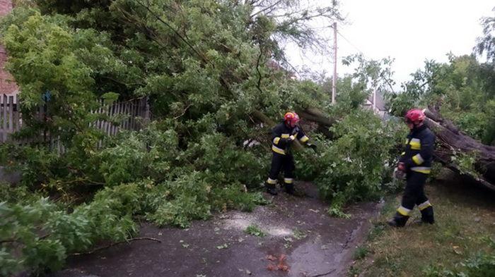 В Ровенской области выпал крупный град (видео)
