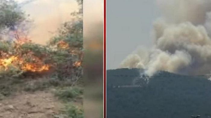Возле Стамбула на острове горит лес (видео)
