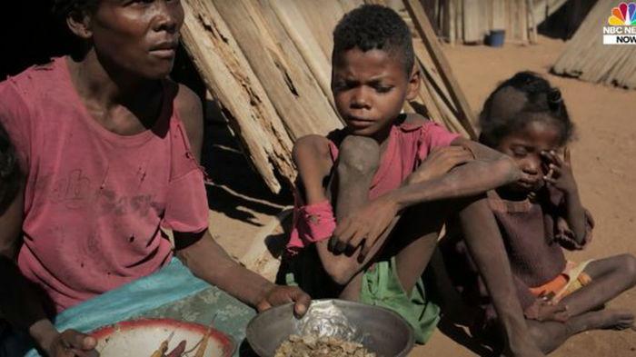 Мадагаскару грозит масштабный голод из-за изменения климата