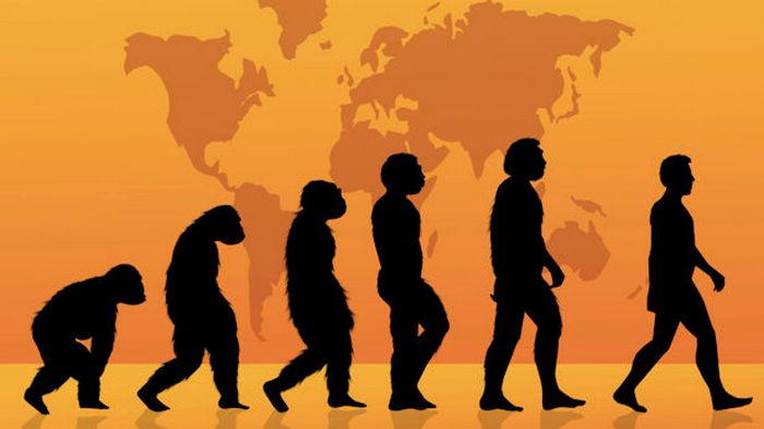 21 век на дворе. Больше половины жителей США все же признали теорию эволюции
