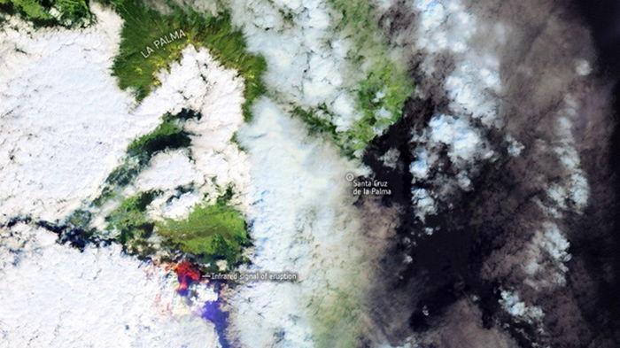 Вулкан на Канарах показали из космоса (фото)